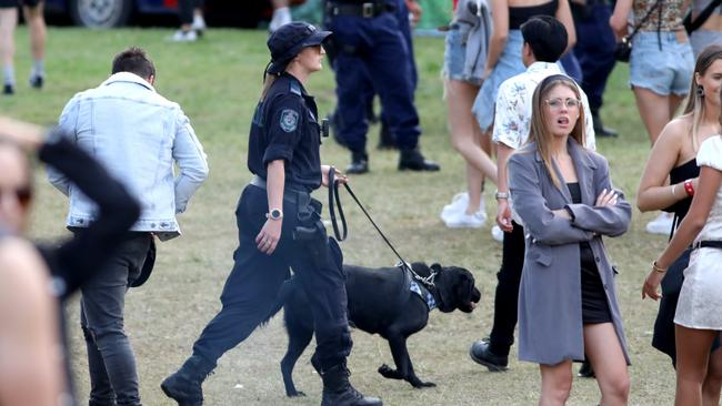 The inquest was critical of heavy-handed policing at music festivals, including the use of sniffer dogs. Picture: Damian Shaw