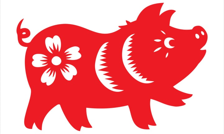 Pig, year of the pig, zodiac, chinese zodiac sign
