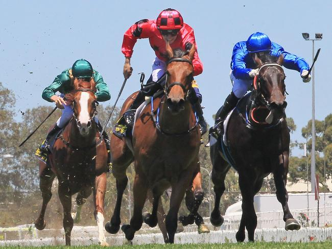 Lee Magorrian pilots Secret Lady (red) to victory at Rosehill Gardens last month. Picture: Getty Images
