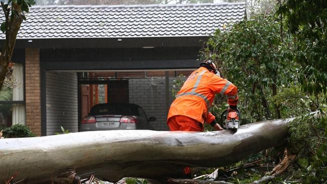 SES clear a fallen tree from a home at Mt Dandenong. Picture: David Crosling