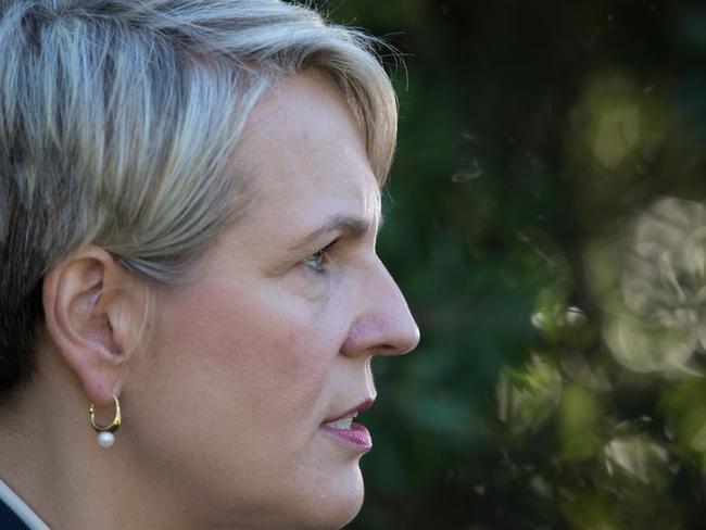 Deputy Opposition leader Tanya Plibersek has slammed a proposal to cut $2.8 billion from higher education. Picture: AAP Image/Craig Golding