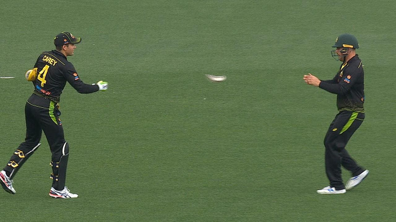 Alex Carey and Aaron Finch share a box.