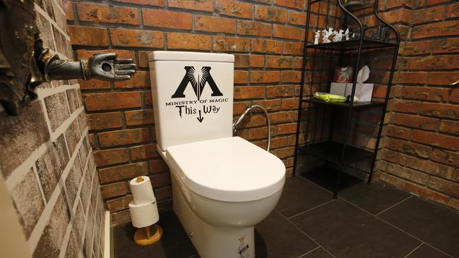 The Harry Potter toilet. Picture: David Caird