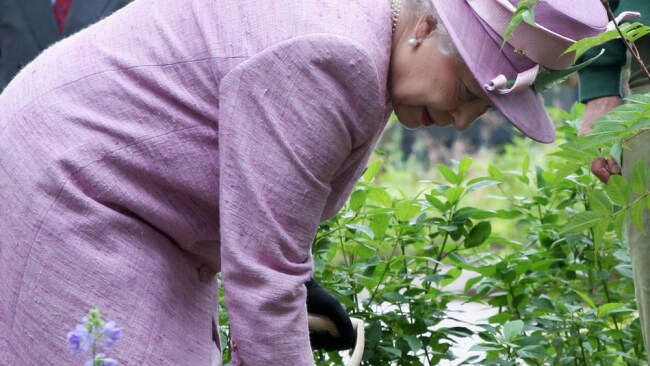 Turns out the queen is a bit of a green thumb. Image: Getty.