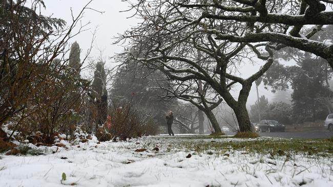 Just an hour's drive from Sydney, snow fell this week at Katoomba in the Blue Mountains.  (Photo by Speed KHAN/AFP)