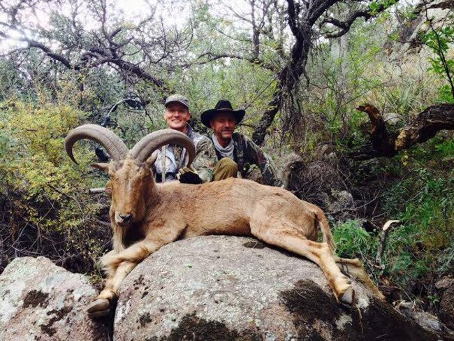 Trophy hunter ... Another of Walt Palmer's kills. Picture: Facebook/Trophy Hunt America