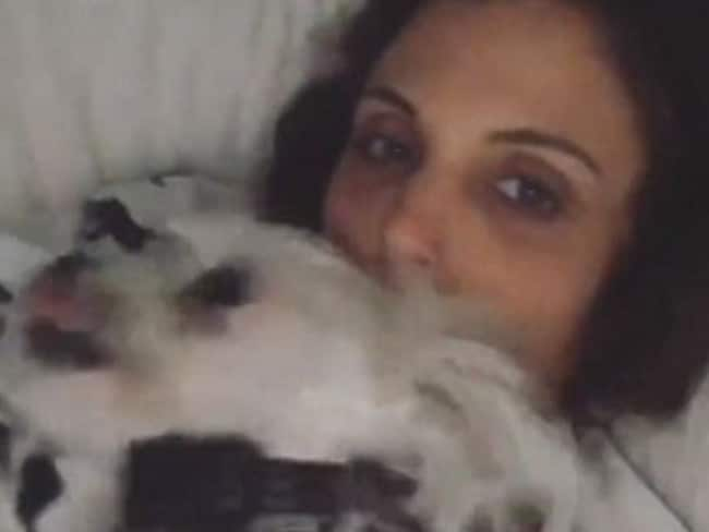 Bethenny Frankel appeared oblivious that Dennis Shields was dead, sharing this image with her dog on her Instagram stories. Picture: Instagram