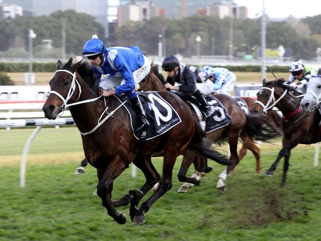 Winx won the Winx Stakes to break Black Caviar's win record in August, her 26th straight.