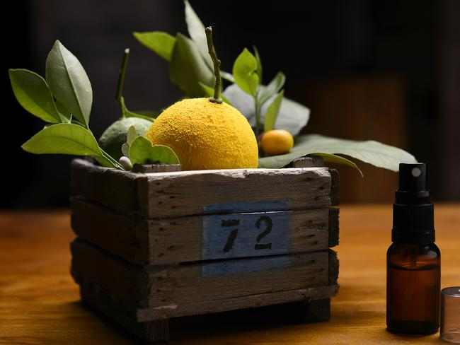 Extraordinary ... The deceptive Lemon, Lime and Bitters dessert created by George Calombaris. Picture: Channel Ten