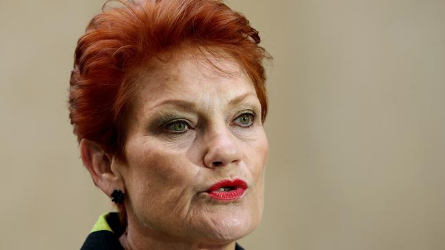 One Nation Leader Pauline Hanson Is Under Fire For Her Comments On Children With Disabilities
