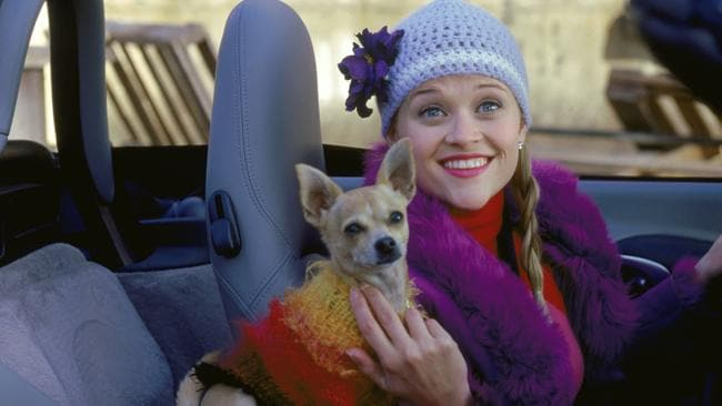 What's next for Elle Woods?