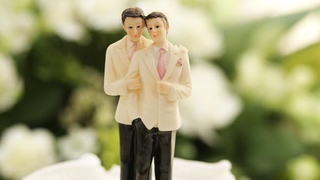 Got questions about the same-sex marriage plebiscite? Don't worry. We've got you covered.
