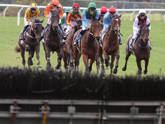 Steven Pateman and Sea King (green/blue silks) lead the field to the first jump, a position they would never relinquish. Picture: Getty Images