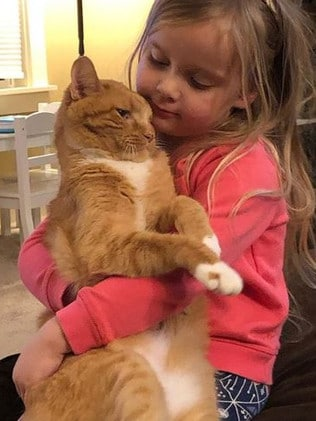 Abby and Bailey had a very special bond, she was his 'person'. Source: Instagram/Bailey No Ordinary Cat