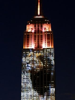 The Empire State Building with Cecil's face on it. Picture: Kena Betancur