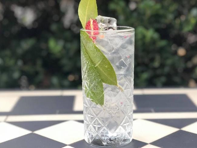 Stick with clear alcohol like gin and vodka mixed with something rehydrating such as tonic water. Picture: Diageo