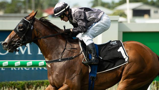 Houtzen is in great shape for the King's Stand Stakes at Royal Ascot. Picture: AAP