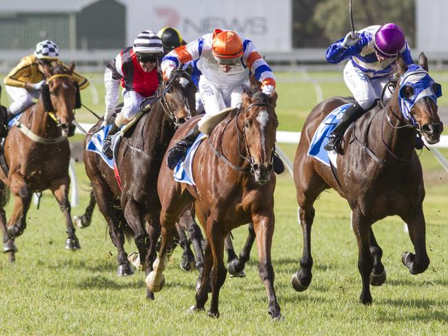 Casino Club (Paul Gatt) makes it two wins from her three starts for the Tony McEvoy stable. Picture: Atkins Photography