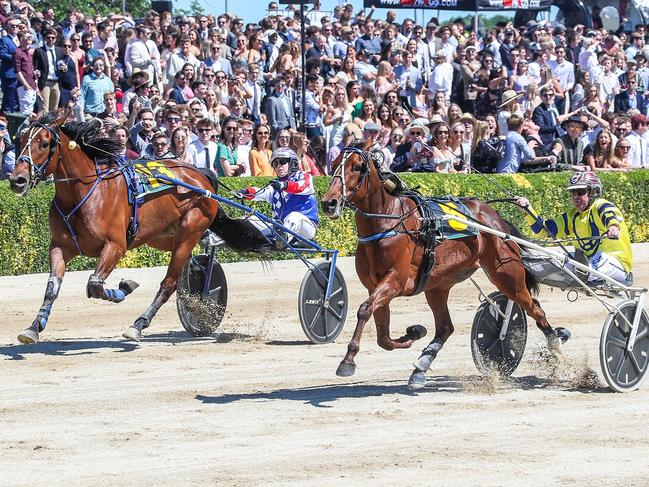 Tough Monarch (right) wins the Group 1 trotters' free-for-all in Addington last month.