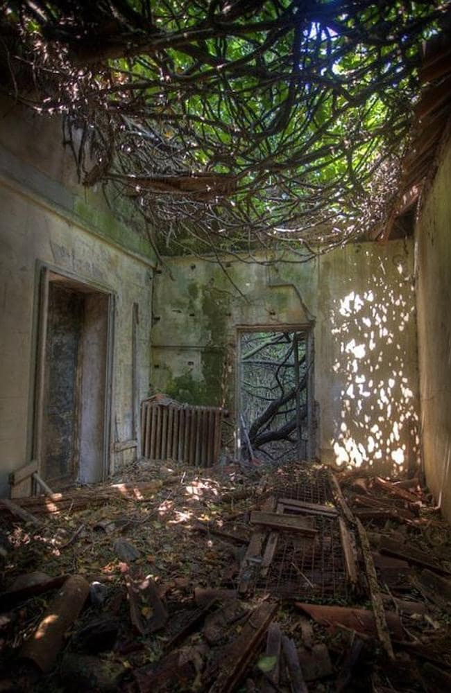 Poveglia in Italy is the world's most haunted island and it's up for sale | Herald Sun