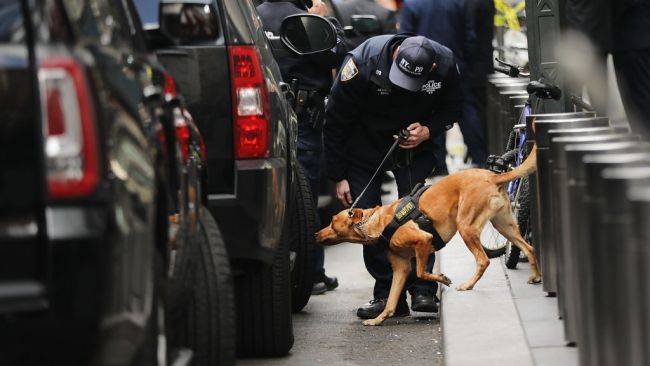 A Police bomb sniffing dog is deployed outside of the Time Warner Center. Source: Getty Images