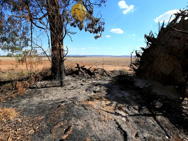 The charred ground on Whitton Stock Route Road in Cocoparra National Park where Schoolteacher Stephanie Scott's body was found badly burned 60kms from Leeton. Picture: Adam Taylor