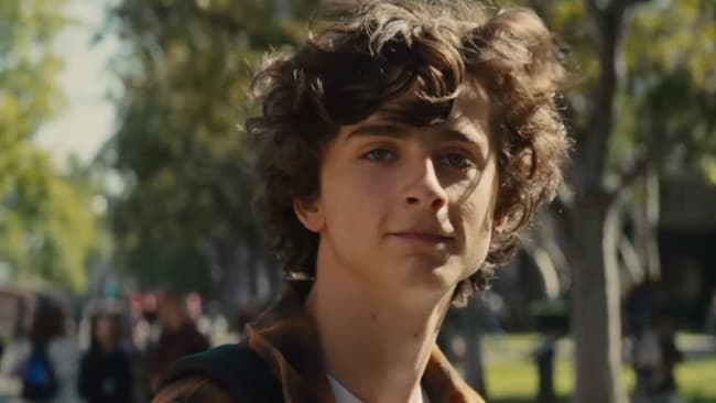 Beautiful Boy captures the alluring charms of addicts.