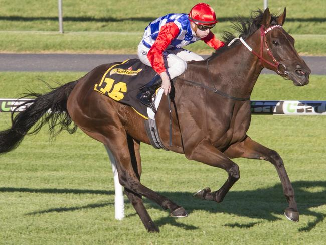 Sopressa scores a dominant win in the Schweppervescence Stakes at Morphettville. Picture: Atkins Photography