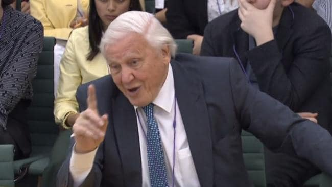 Sir David Attenborough this week revealed his shock at damage done to the reef. Picture: AFP