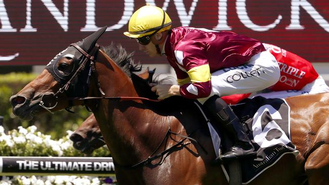 Aqua D'ivina will return at hawkesbury. Picture: AAP