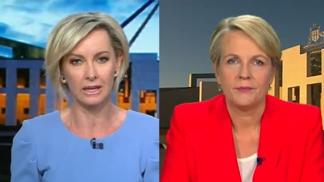 Tanya Plibersek bites back at Deb Knight (Today Show)