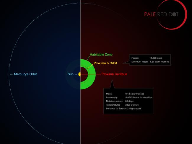 This infographic compares the orbit of the planet around Proxima Centauri (Proxima b) with the same region of the Solar System. Picture: AFP/European Southern Observatory/M Kornmesser/G Coleman