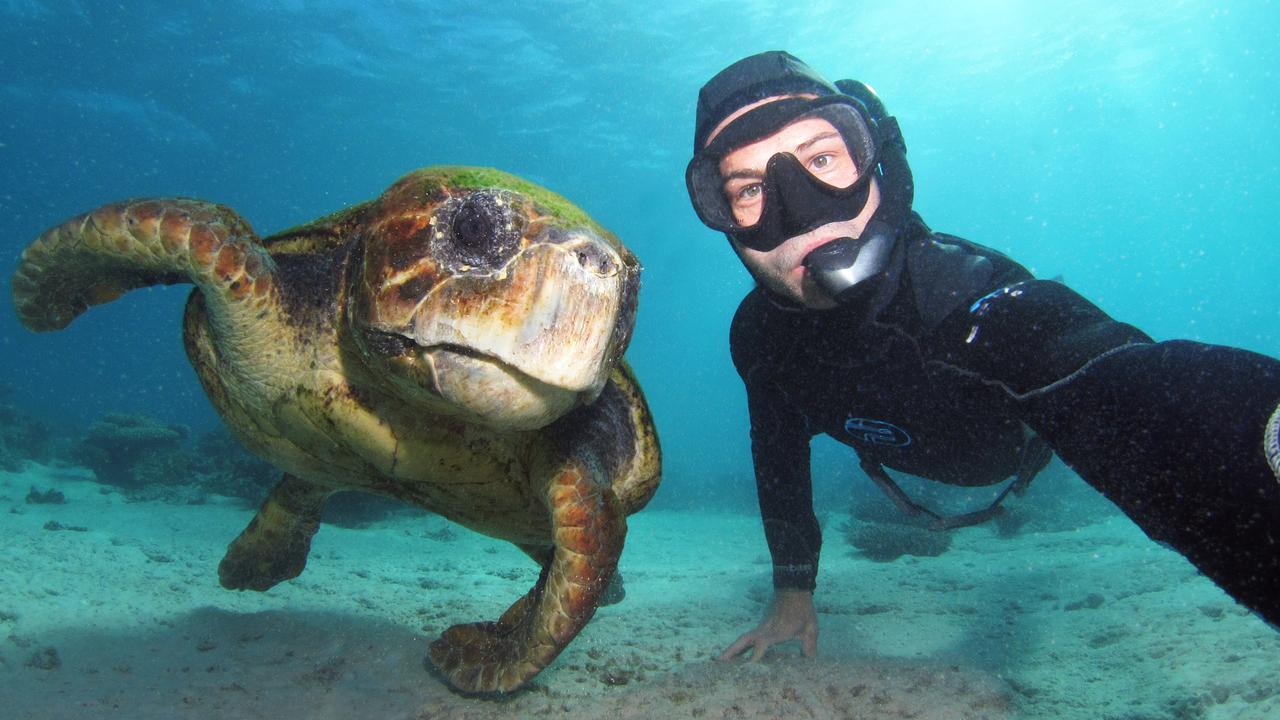 Johnny Gaskell and a sea turtle underwater in the Great Barrier Reef. Picture: Johhny Gaskell/Underwater Festival