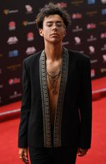 Kurt Coleman arrives on the red carpet for the 31st Annual ARIA Awards 2017 at The Star on November 28, 2017 in Sydney, Australia. Picture: AAP