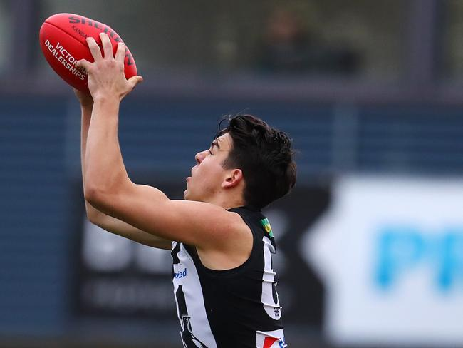 Collingwood's Marty Hore averaged seven marks in 2017. Picture: Michael Klein