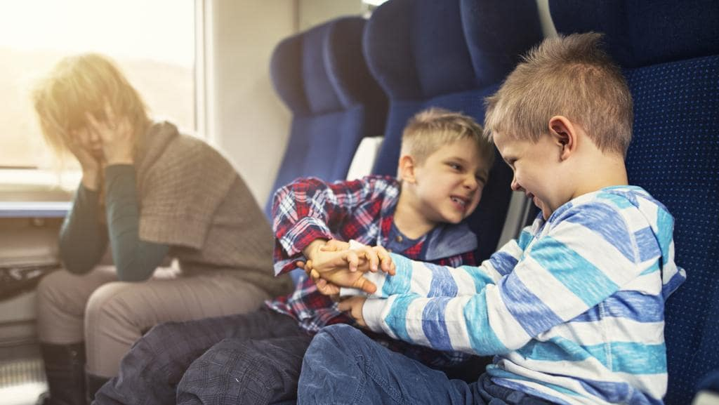 Indigo Airline Bans Children From Areas Of Its Cabins In