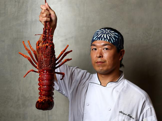 Sushi chef Shimpei Raikuni brandishes a lobster at Kiyomi at The Star. Picture: Adam Head