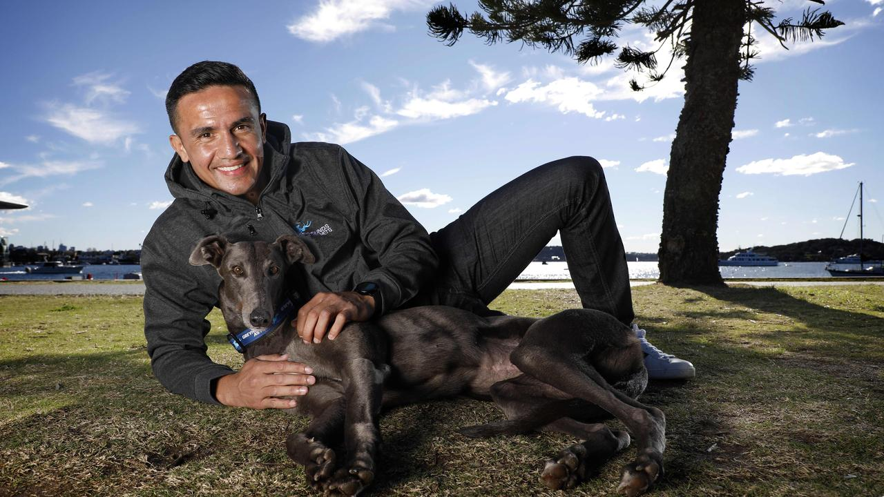 Tim Cahill with his blue greyhound, Luna Moana. Picture by Chris Pavlich for The Daily Telegraph