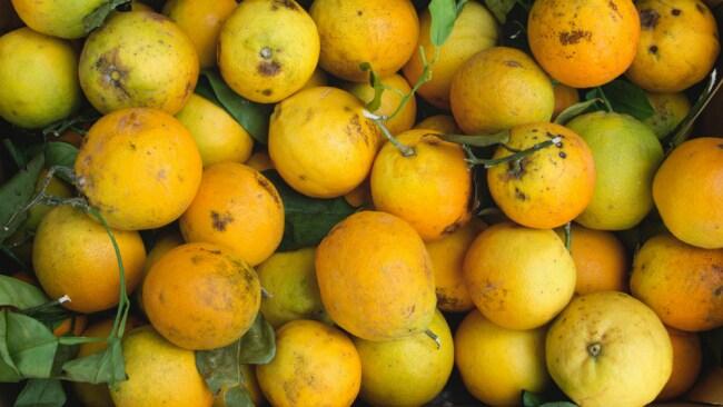 Like apples and oranges. Photo: Gemma Evans for Unsplash