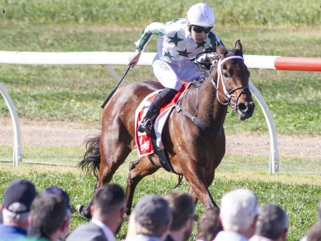 All Over Bosanova (Gary Lo) wins the sprint at Balaklava on Cup Day. Picture: Atkins Photography