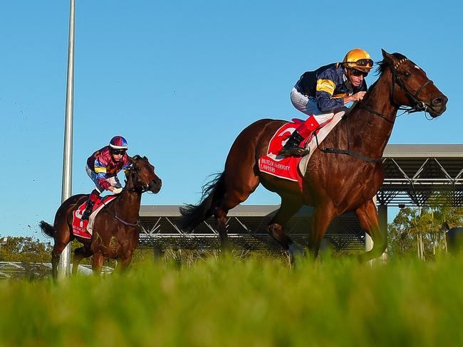 Jockey Michael Hill rides Araldo Junior at the Pool Pro Queensland Cup during the Queensland Cup Race Day. Picture: AAP