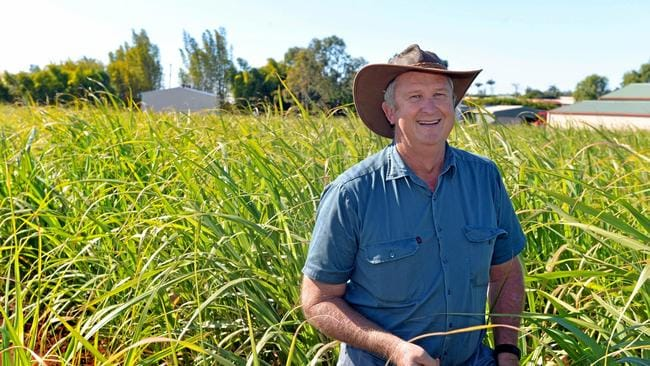 Encouraging others: Kelvin Griffin said despite the drought and prices for sugar, young farmers shouldn't be deterred from the industry. Picture: Zach Hogg