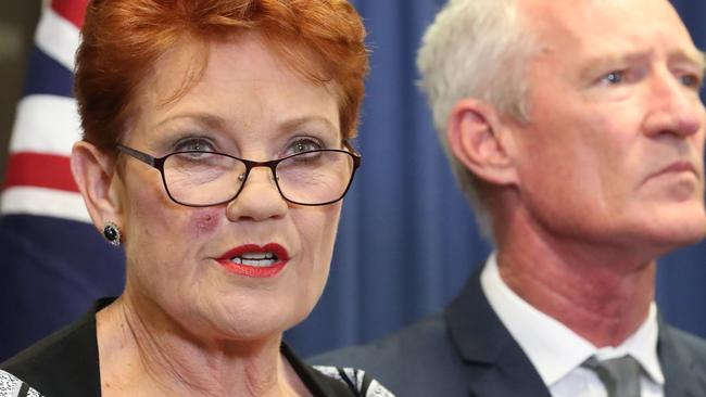 Pauline Hanson at that press conference, still bearing the injury from her tick bite. Picture: Liam Kidston