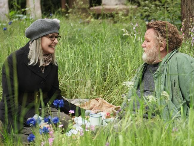 Diane Keaton and Brendan Gleeson give their all in the grey-powered romantic comedy Hampstead.