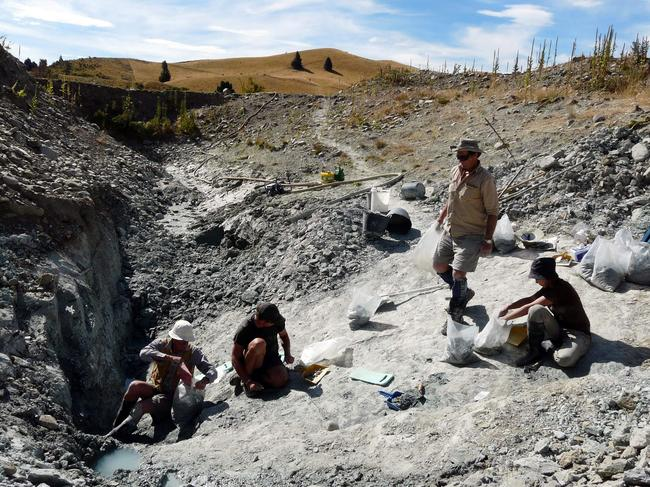 Scientists working at an excavating site in St Bathans in New Zealand's Central Otago. Picture: AFP/Te Papa Museum/Alan Tennyson.