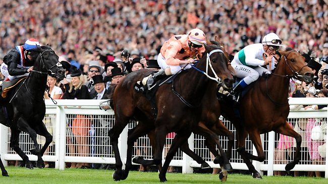 Luke Nolen riding Black Caviar (Salmon Black spots) win the Diamond Jubilee Stakes during day five of Royal Ascot at Ascot racecourse on June 23, 2012 in Ascot, England. Picture: Alan Crowhurst / Getty Images
