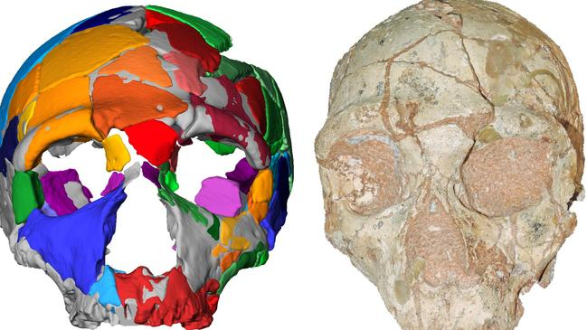This handout picture released shows a reconstruction and computer model of part of a skull named Apidima 2, discovered in a Greek cave. Picture: AFP