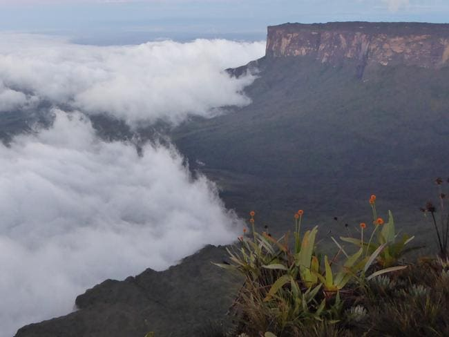 Roraima is a famous -and stunning — mountain in Venezuela. Picture: Will Hatton