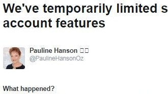 Pauline Hanson suspended from Twitter