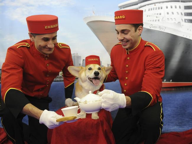 Queen Mary 2 lets your dogs come along for the cruise. Picture: Cunard/AP Images